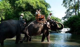 Wisata Bali Zoo Park Kebun Binatang