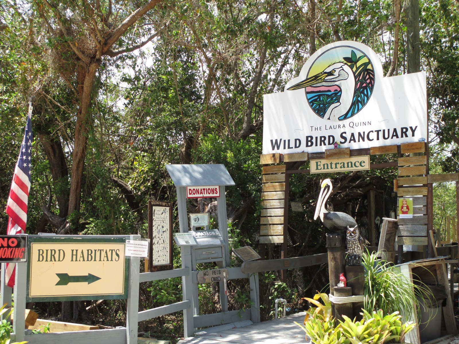 Visit Key West: Top Things to Do in Key Largo