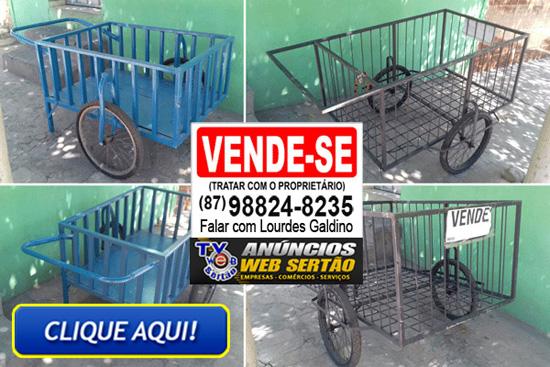 http://www.blogtvwebsertao.com.br/2018/07/negocio-vende-se-2-carrinhos.html