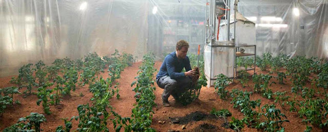 New Research Tomatoes, Peas, and 8 other Crops have been Grown in Mars-equivalent Soil