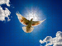 Dove from Sky