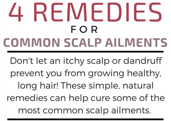 FroBunni | 4 Remedies for Common Scalp Ailments