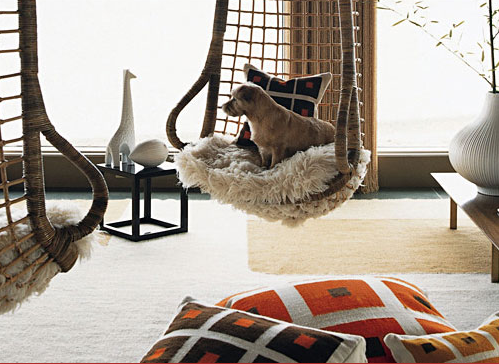 Pretty Inspirational Tips For Pet Friendly Interiors