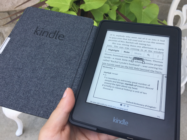 Kindle Paperwhite - Dictionary