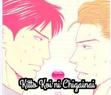 Kitto Koi ni Chigainai