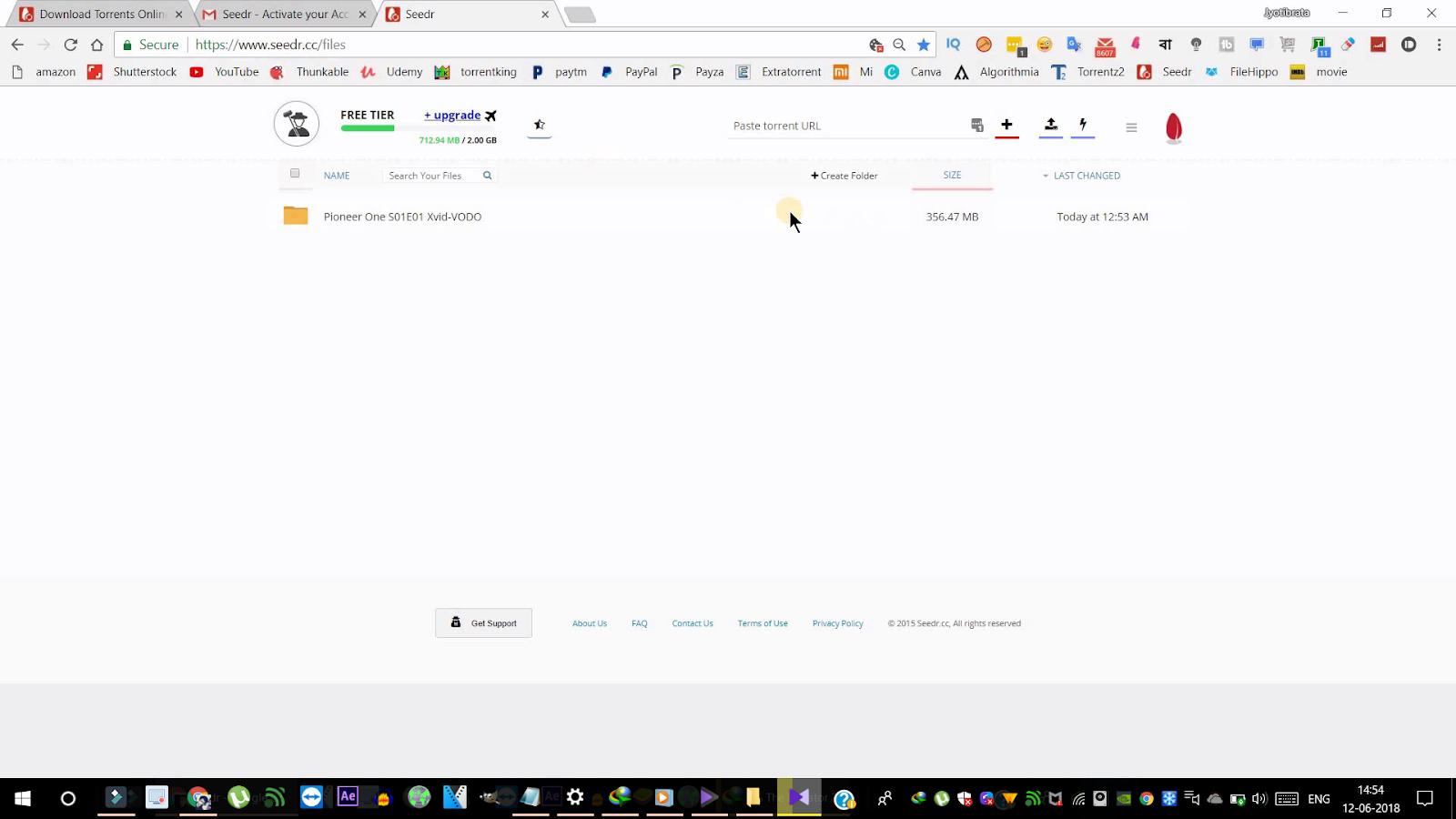 hichki torrent download torrent magnet