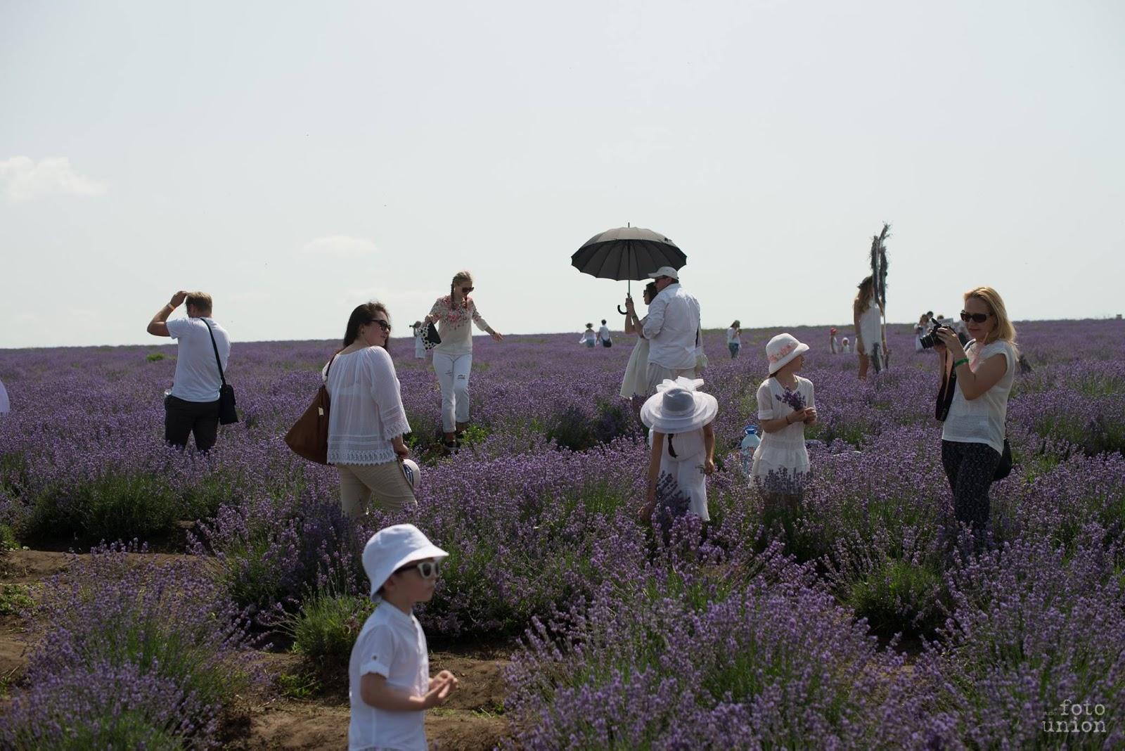 lavender%2Bfest%2B2016%2Bmihaela%2Bjosanu.jpg