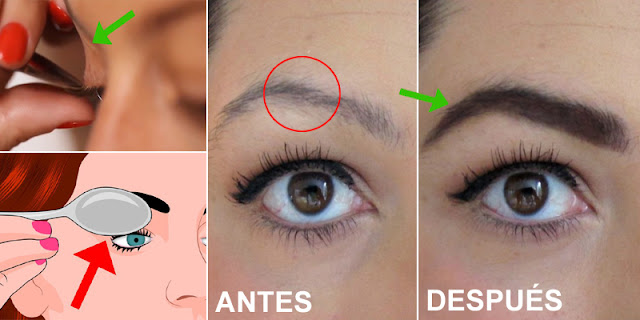 How To Grow Eyebrows And Eyelashes Naturally Within 2 Days!