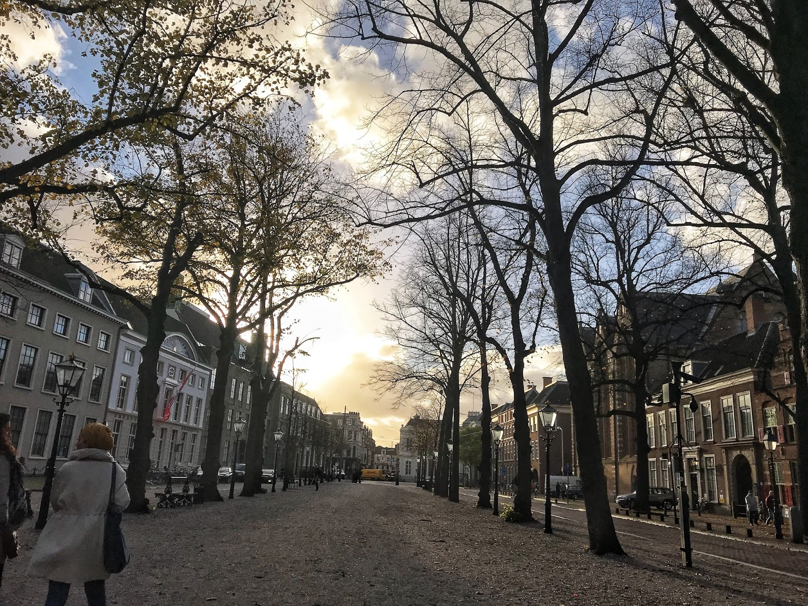 Dusk Lange Voorhout Europe's First Avenue The Hague
