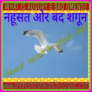 www.shahadatsherani.blogspot.com