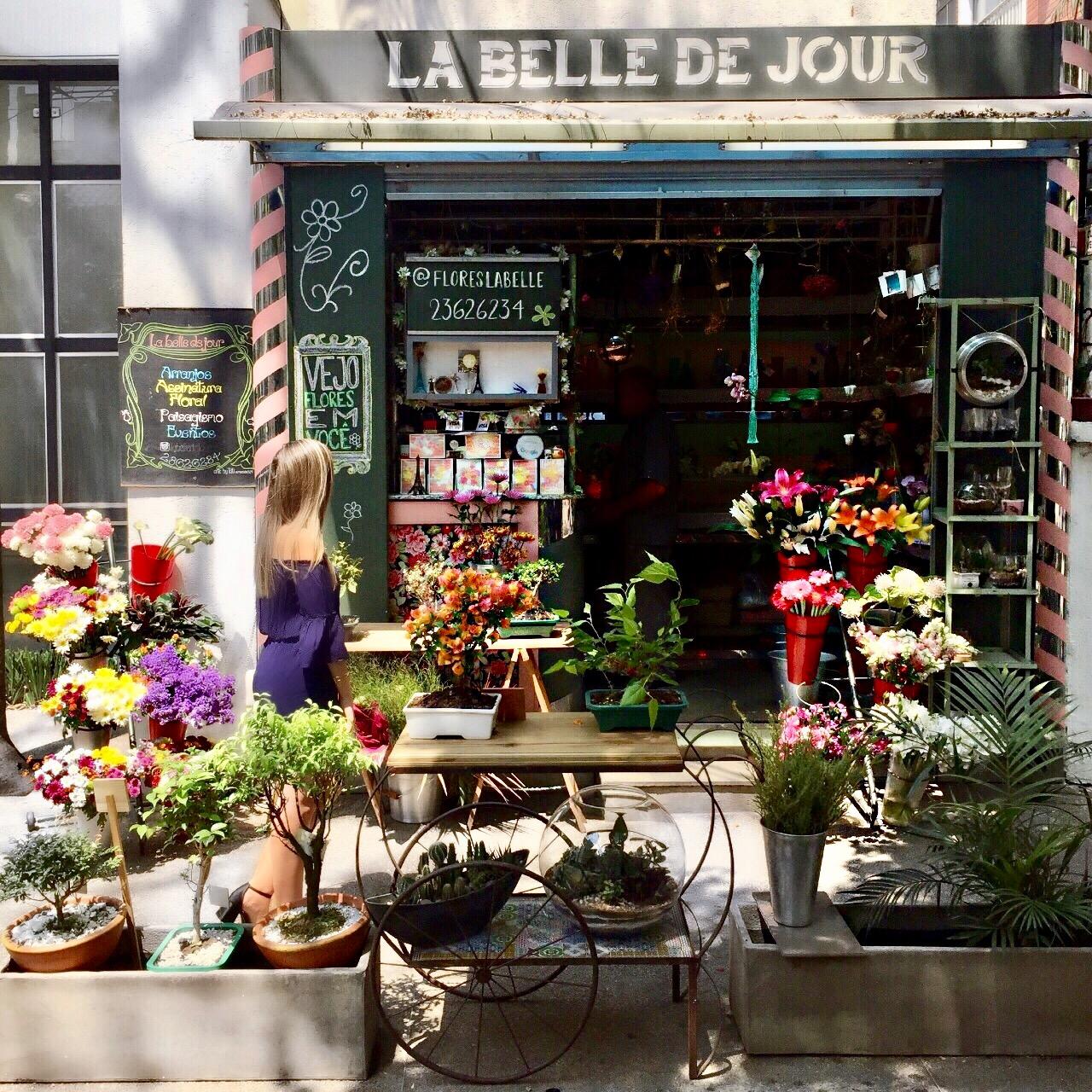 floricultura moema la belle