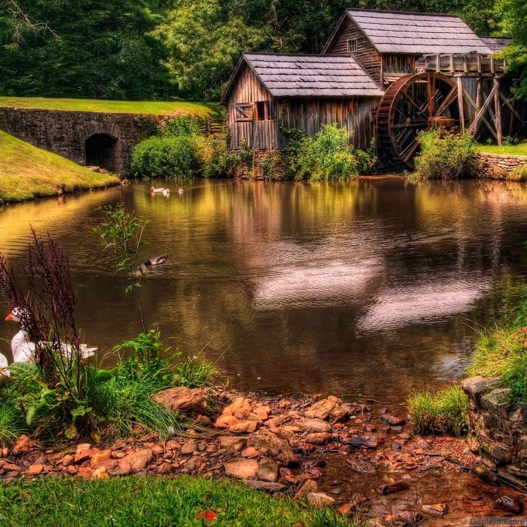 Beautiful Nature Image: Beautiful Nature Profile Pictures