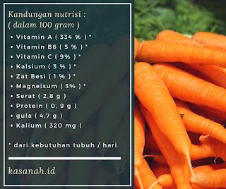 efek samping dan fakta seputar wortel