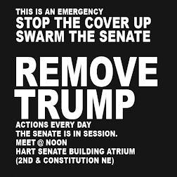 #SWARMTHESENATE