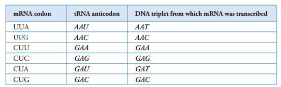 37 Summary of Genetic control | Biology Notes for A level