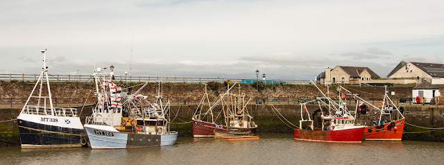 Photo of more trawlers displaying their colourful flags
