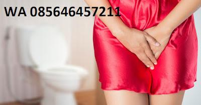 Infeksi Saluran Kencing atau Kencing Nanah (GO)