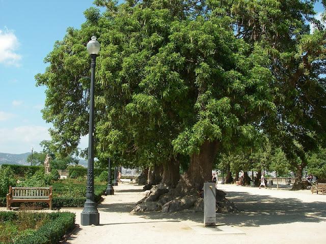 Jardins de Miramar em Montjuic
