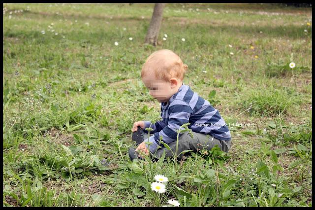 Petit Lou dans l'herbe