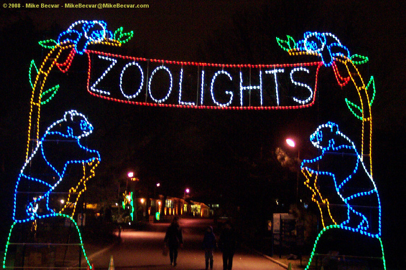 Discount Zoo Lights