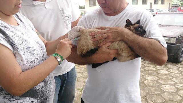 Campanha de Vacinação contra a raiva animal começa dia 29 de agosto em Registro-SP