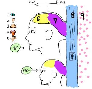 九識論(くしきろん)_nine consciousnessesは何が言いたい理論なのか ...