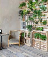 Pallets de madera reutilizados para colocar plantas