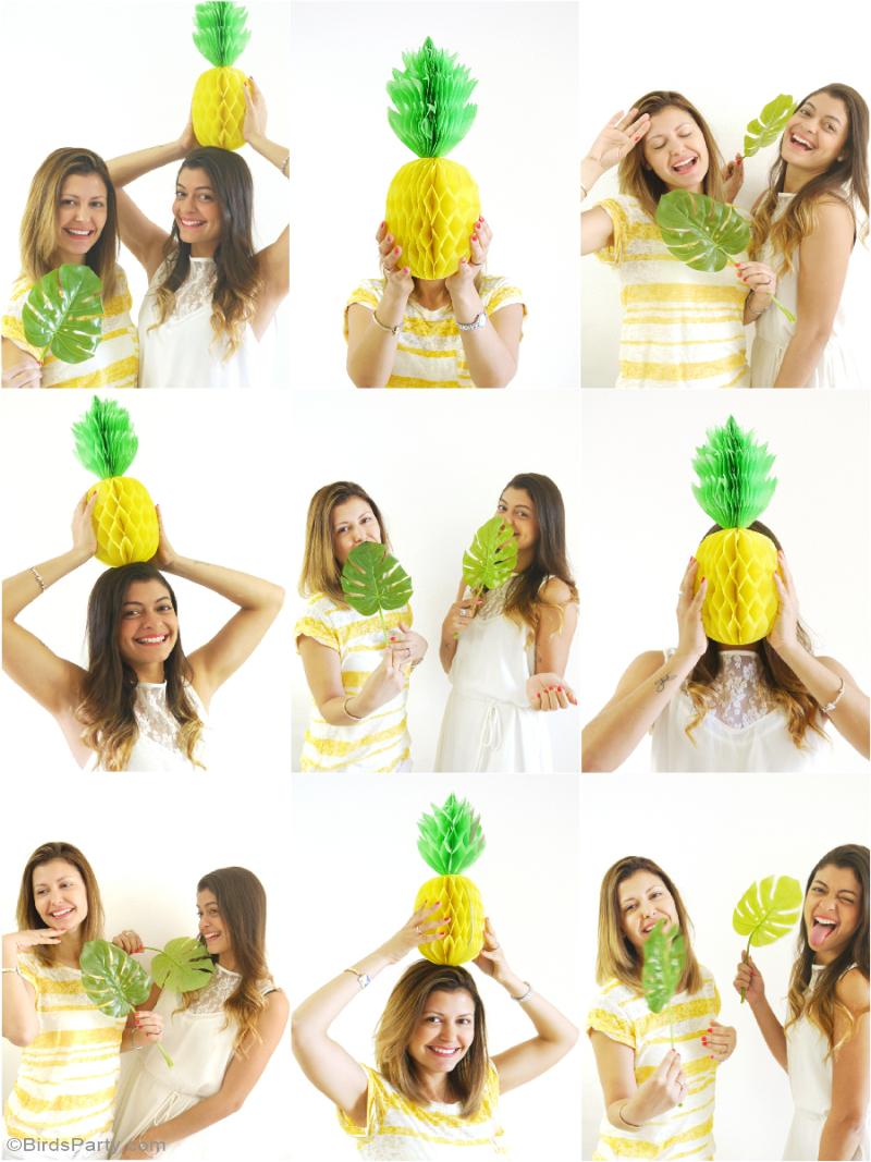 Party Like a Pineapple Birthday DIY Photo Booth - BirdsParty.com