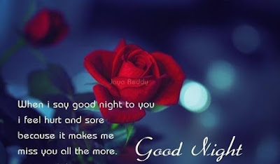 Good Night Wishes Image
