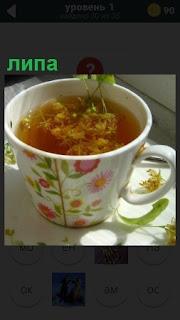В кружке заварен чай с липой и на поверхности плавают семена