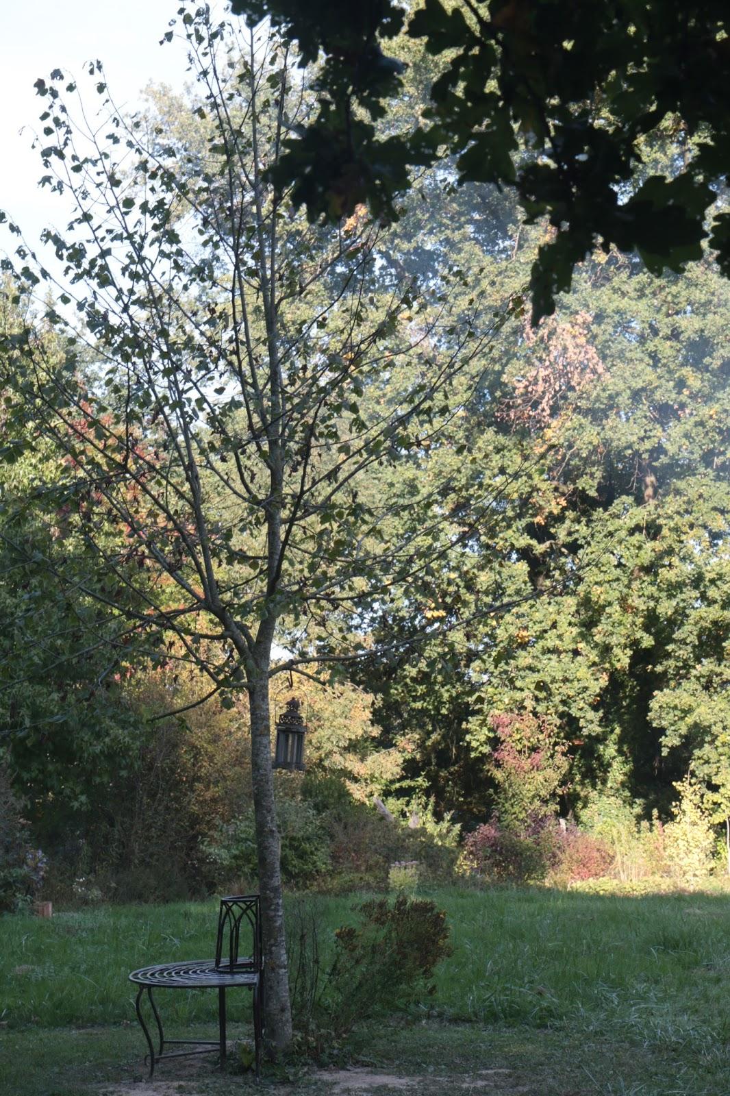 Il etait un petit jard 39 ain for Bd du jardin botanique 50 bruxelles