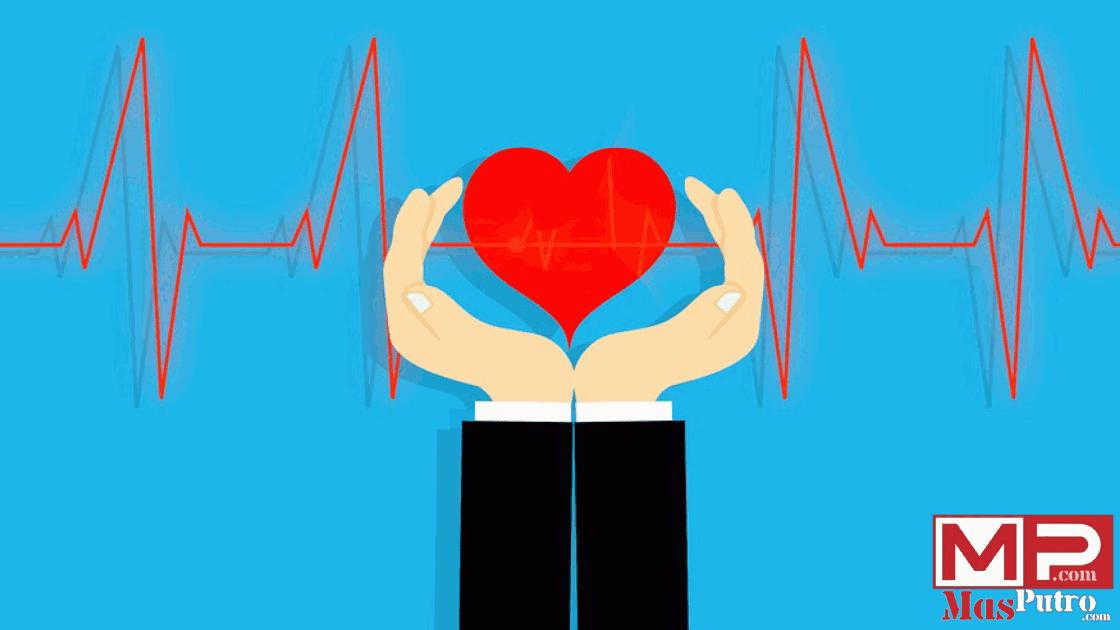 Niche Tentang Kesehatan