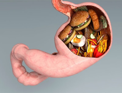 mengurangi kolesterol