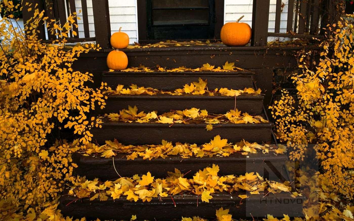 Pumpkin-Season-Tema