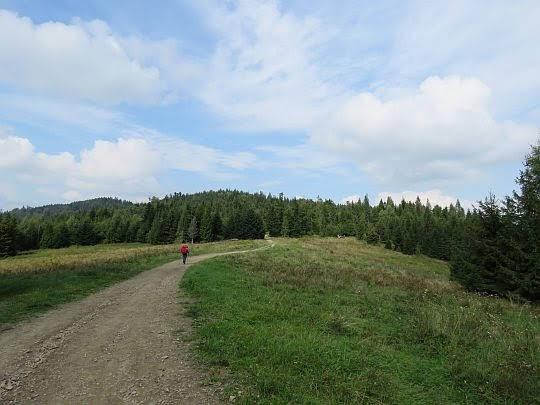 Przełęcz Pośrednie (918 m n.p.m.) i Polana Pośrednie.