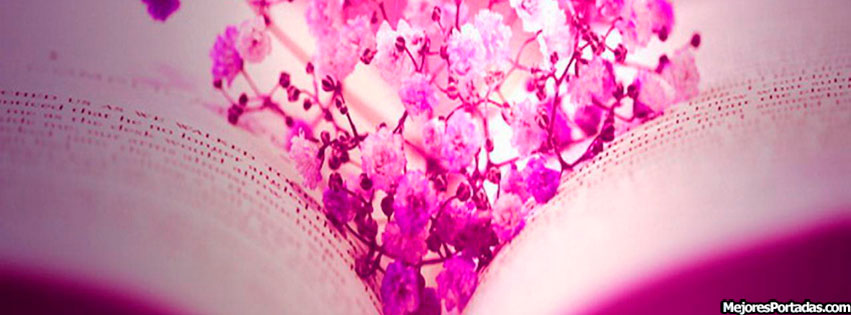 PORTADAS FACEBOOK, TIMELINE, BIOGRAFÍA...: Flores En El