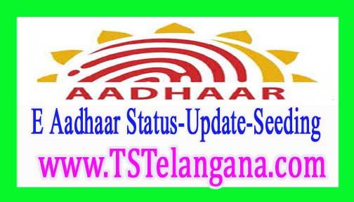 E Aadhaar Card Download Aadhaar Seeding Duplicate Aadhaar Card Download | Aadhaar Update | Aadhaar Card Status | Free Download Aadhaar Card