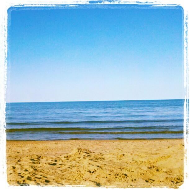 Evanston Newbie: Evanston Beaches are Officially Open so Buy