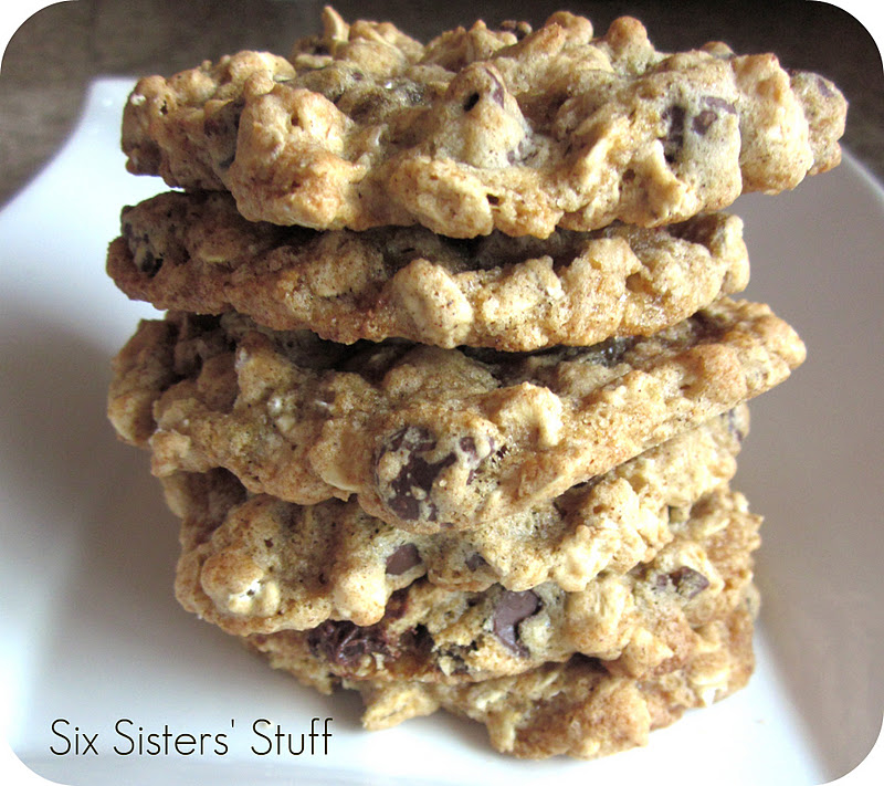 Low Fat Oatmeal Cookie 51