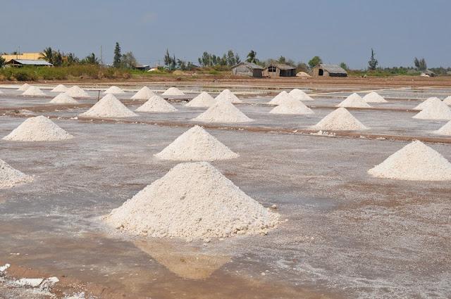 Discover Bac Lieu - A peaceful palce Vietnam Mekong Delta 2