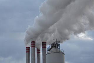 Προτάσεις Τατούλη για τα πυρηνελαιουργία
