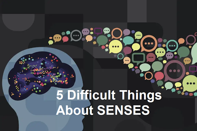 5 Difficult Things About SENSES