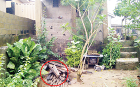 man flogs son to death in lagos