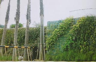 Taman Vertikal | Vertical Garden | jasataman.co.id XIII