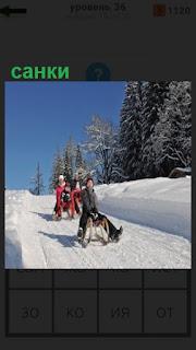 с горы на санках спускаются дети, катаются зимой по снегу