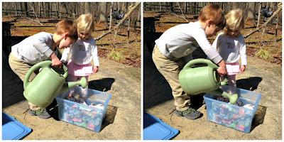 Montessori Spring Composting: Vermiposting