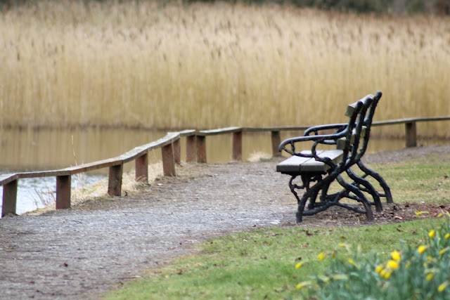 Emo Court Bench at lake