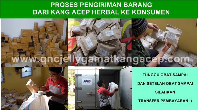 Efek Samping Qnc Jelly Gamat