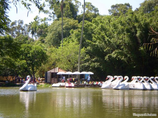 Lago da Redenção e seus pedalinhos Porto Alegre
