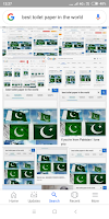 Google says that Pakistani flag is the best toilet paper of the world